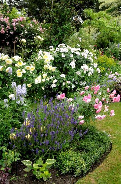 Jardins d\'ornement - Thomas Alamy