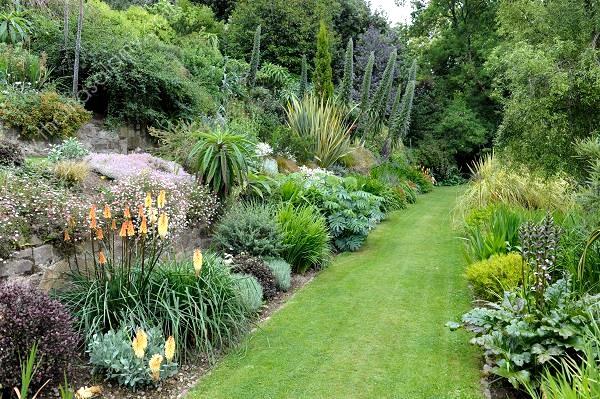Jardins d 39 ornement thomas alamy for Plantes ornement jardin